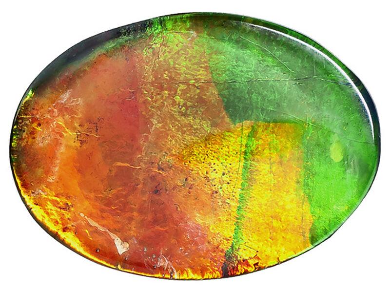 Multi-color Ammolite
