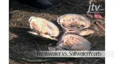 Freshwater vs. Saltwater Pearls